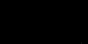 Zipline logo PNG copy